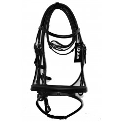 Iquus bridle with continental reins